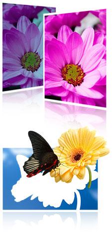 Med Adobe Photoshop CC kan du behandle bilder, sette sammen bilder, retusjere bilder og skape flott fotokunst! Kom på kurs!